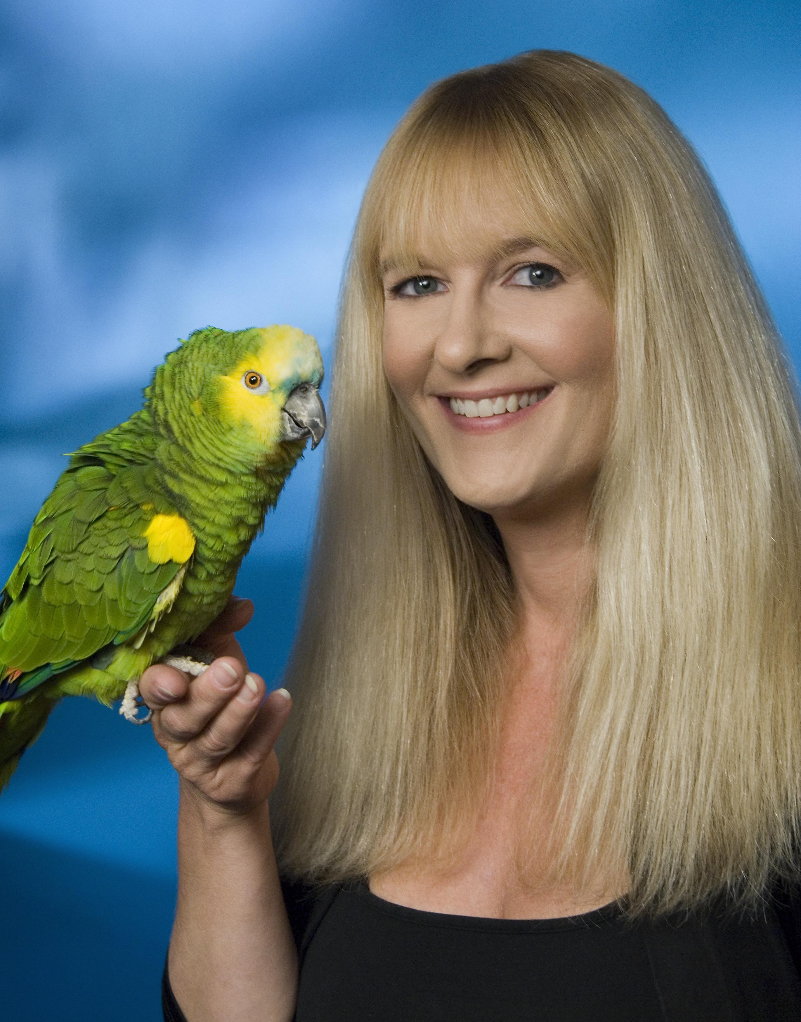 parrot training press kits